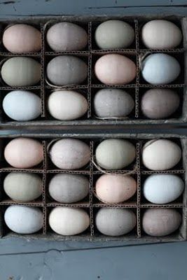 eggsWall Colors, Fresh Eggs, Color Palettes, Soft Colors, Beautiful Eggs, Soft Easter, Muted Colors Palettes, Easter Eggs, Colors Inspiration