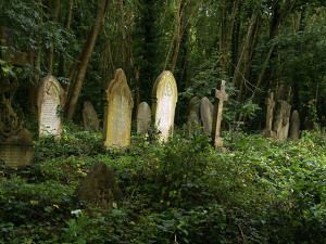 Haunted Cemetary in Dallas, USA. This looks very interesting