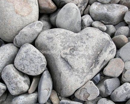 A large gray, white and black mottled heart shaped stone lies surrounded by other rocks on the beach in Seaside OR. The stone has an interesting rough and textured surface.  The other smaller stones are a nice mixture of browns and speckled grays. The entire photo is filled with stones with the heart shaped rock in the bottom right taking up about 2/3 of the photo.   Heart shaped rocks are not rare by any means, but it is always a joy to find one.      If you are a collector of heart shaped…