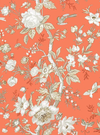 Nemour+Coral+wallpaper+by+Thibaut                                                                                                                                                      More