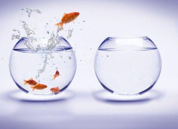 Outra razão pela qual muitas pessoas falham é que eles não conseguem antecipar mudanças e se adaptarem. O mundo está sempre mudando e o processo de contratação, qualificação profissional e tecnologia também está mudando bastante. Está mudando em um ritmo muito mais rápido do que nunca.  Se você não antecipar as mudanças, você vai ser deixado para trás. Você vai acabar falhando. Haverá coisas que vão acontecer e se você não se preparar para elas agora, você vai pagar as conseqüências.