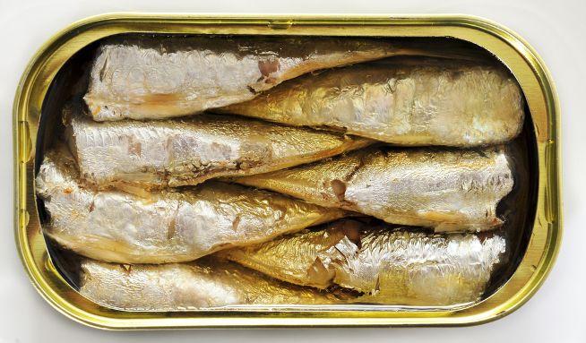 Test: Kupujete Baltické sardinky? VBaltu ale sardinkynežijí - Vitalia.cz