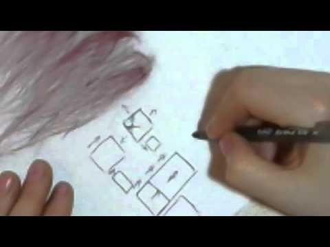 Принципы раскладки шерсти - YouTube