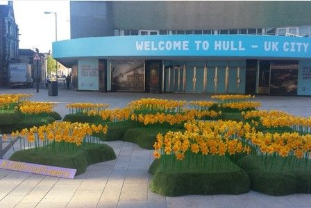 The UK's only Lego certified professional used 146,000 bricks to build 1,700 Lego daffodils for Hull's city centre.