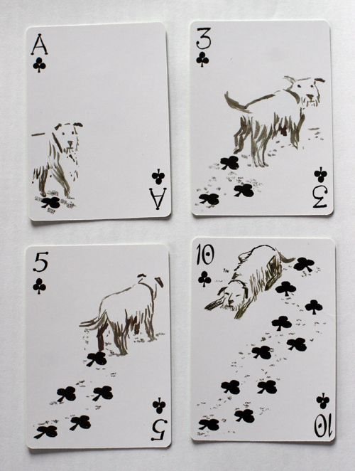 animal playing cards