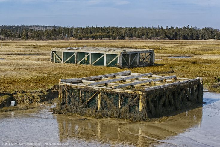 Lobster Cars Aground - Chebogue