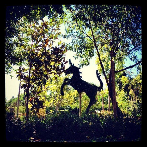La magia de El bosque encantado de San Martín de Valdeiglesiaa (Madrid). Una excursión muy recomendable.