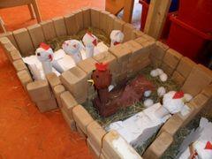 Bouwhoek: kippenhok
