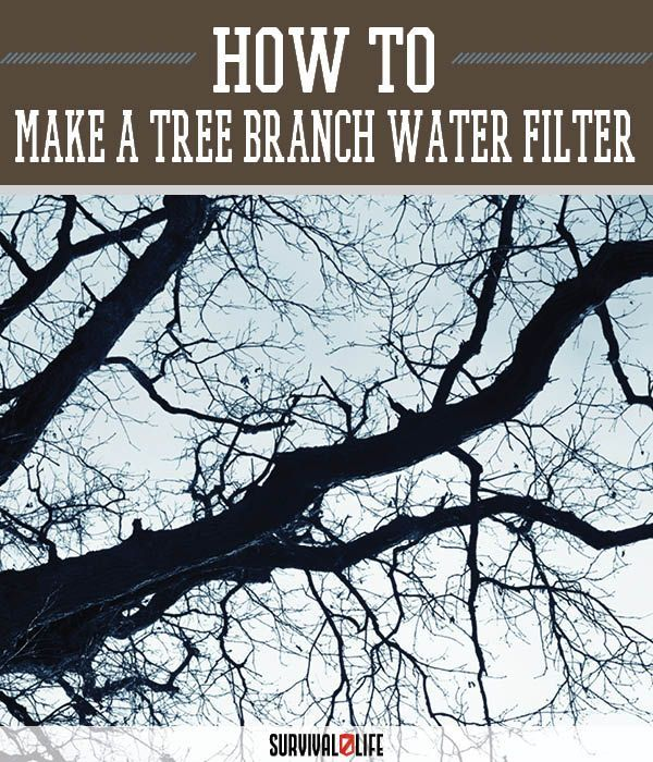 Tree Branch Water Filter Self Sufficiency Survival Life Skills