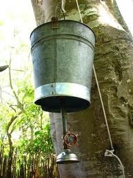 bucket showers - wild camping solution