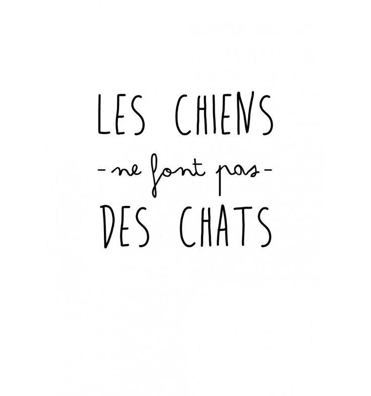 1000 images about citations on pinterest quotes positive keep calm and french quotes - Les chiens ne font pas des chats ...