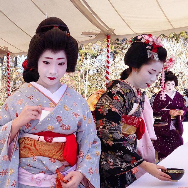 53 Best 井上雄二 Images On Pinterest: 85 Best Images About Pretty Geisha On Pinterest