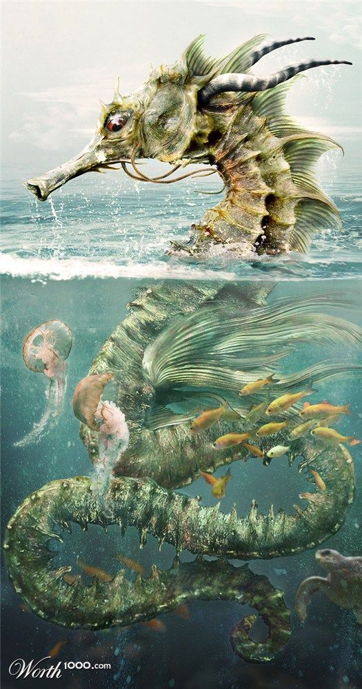 Seahorse Dragon by Rungue  Sources http://rookery9.aviary.com.s3.amazonaws.com/16086500/16086542_f629.jpg