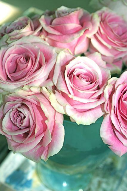 Kauniit ruusut kauniissa vaasissa.