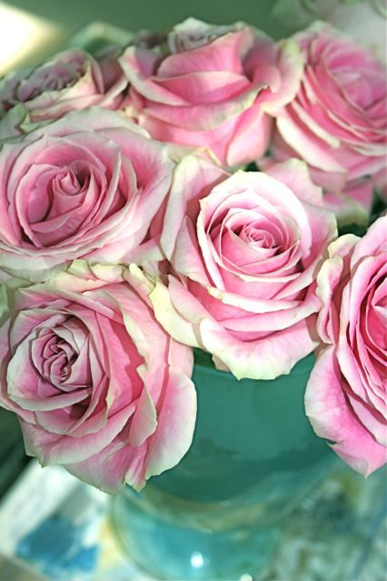 Pink Roses in Aqua Vase...