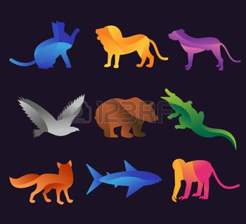 wild animals: Animal zoo vector icons set. Wild animals vector collection. Jungle animals, vector animals, fox, lion, monkey, cat and dog. Sea and forest animals icon.