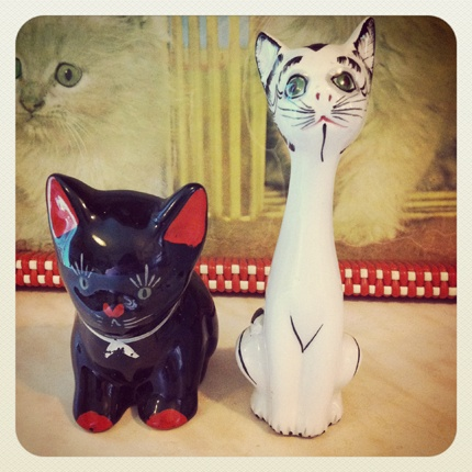 Black and white cats. #vintage #1950s #1960s   http://dilystreacle.wordpress.com/