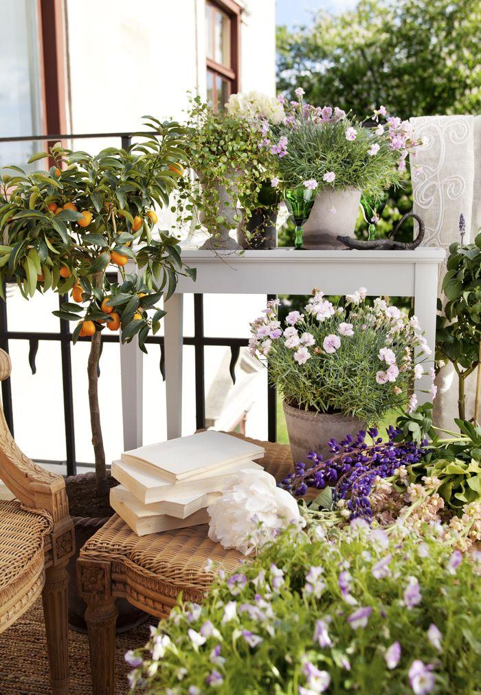 Så många önskningar – och så liten plats. En ordinär balkong är oftast inte så stor. Hur inreder man en liten balkong? Och hur blir det maximalt härligt?