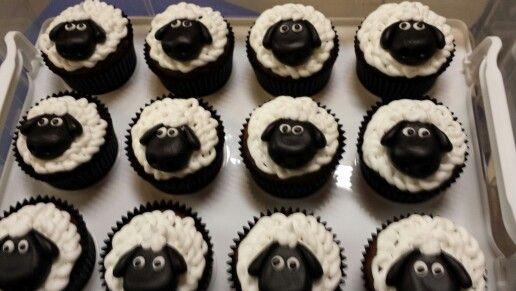 Sheep cupcakes for RSPCA cupcake day
