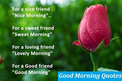 Flower Good Morning Quotes images download