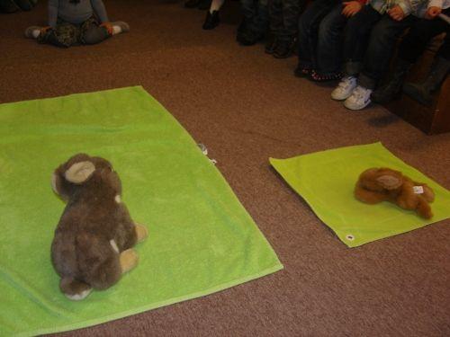 Groot konijn op groot doek, Klein konijn op klein doek. Opdracht: in een mand zitten (plastieke) eitjes. Aan de kleuters om te sorteren; is het groot of klein?