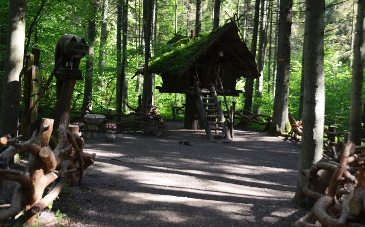 Sprookjesbos van natuurpark Tērvete