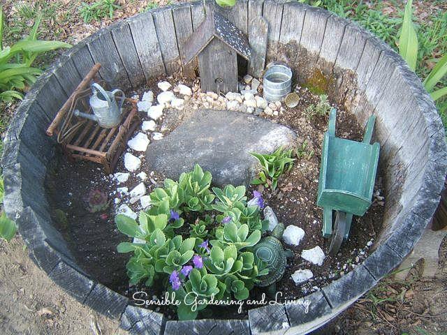 miniature garden in a barrel