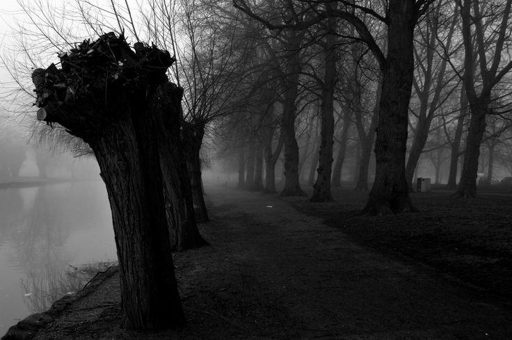 A haunting walk