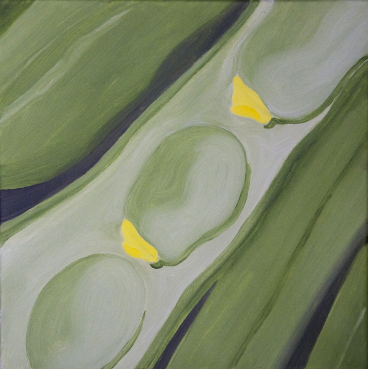 'Broad beans' oil on canvas 300x300mm