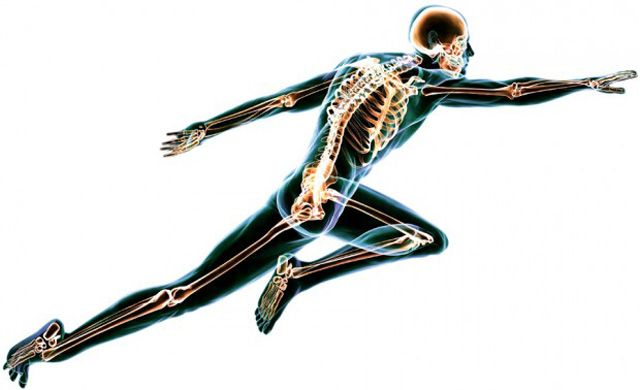 Vitamin D hat eine Schlüsselfunktion für die Gesundheit. Es ist an Tausenden von Regulierungsvorgängen in den menschlichen Körperzellen beteiligt. Folglich erhöht ein Vitamin-D-Mangel das Krankheit…