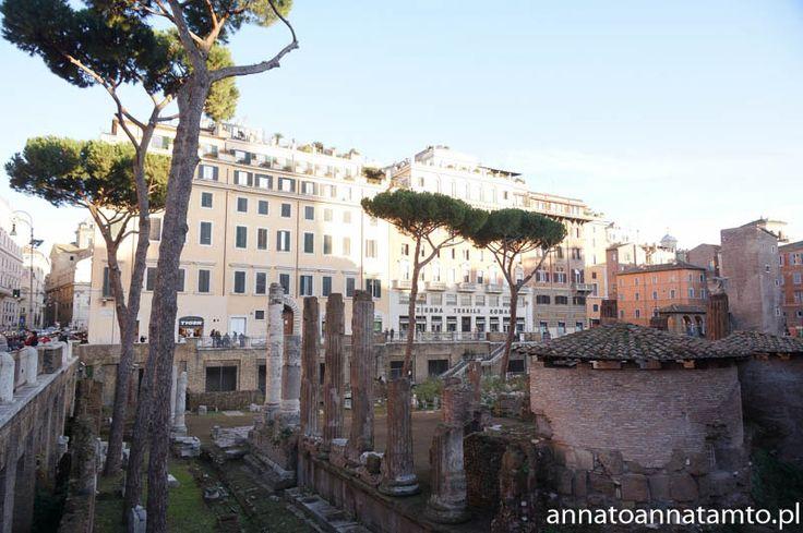 Kolejnego dnia poszliśmy zobaczyć słynne Forum Romanum. Najstarszy plac miejski w Rzymie, otoczony sześcioma wzgórzami. Odbywały się tam najważniejsze uroczystości publiczne w starożytności, zrobiło na mnie niesamowite wrażenie. Wchodząc na niego mijało się miliony odłamów budowli, spowodowane przez trzęsienia ziemi. Jak spadły tak zostały.