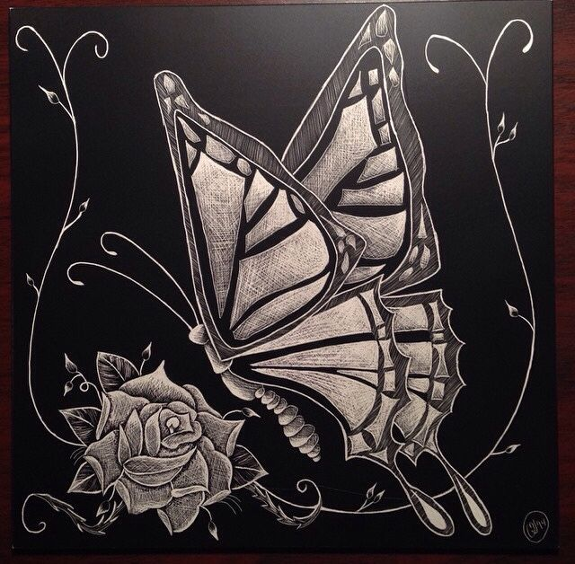 Butterfly scratchboard - photo#15