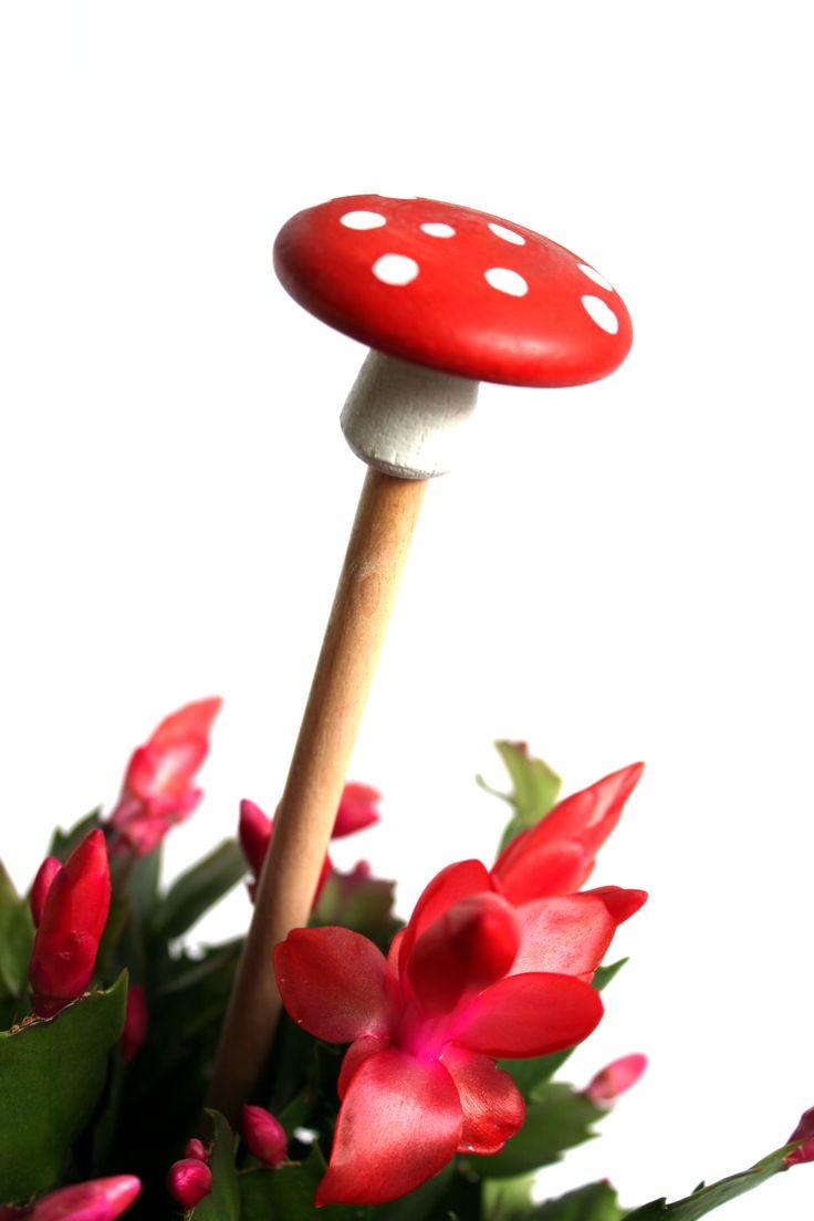 Díky Les Houbeles vám doma houby porostou i mimo sezónu.
