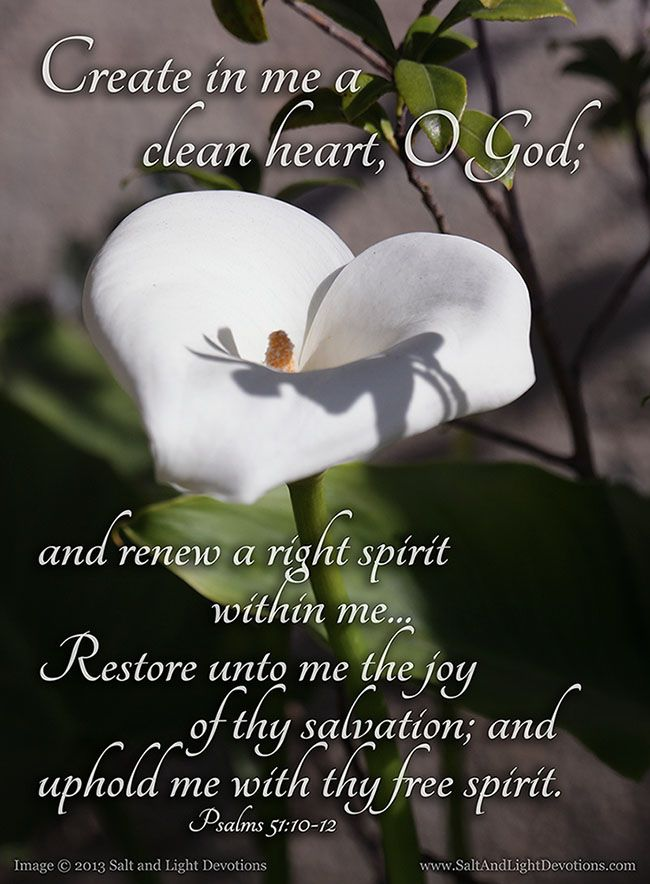 10 Create in me a clean heart, O God; and renew a right spirit within me.  11 Cast me not away from thy presence; and take not thy holy spirit from me.  12 Restore unto me the joy of thy salvation; and uphold me with thy free spirit.  Psalms 51:10-12 KJV