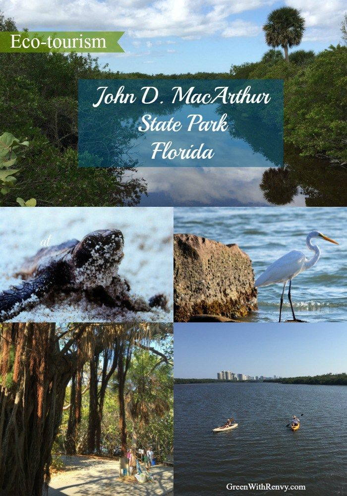 Eco-Tourism in South Florida State Park - John D. MacArthur Park in Palm Beach County is a great family and adventure destination.  Green With Renvy