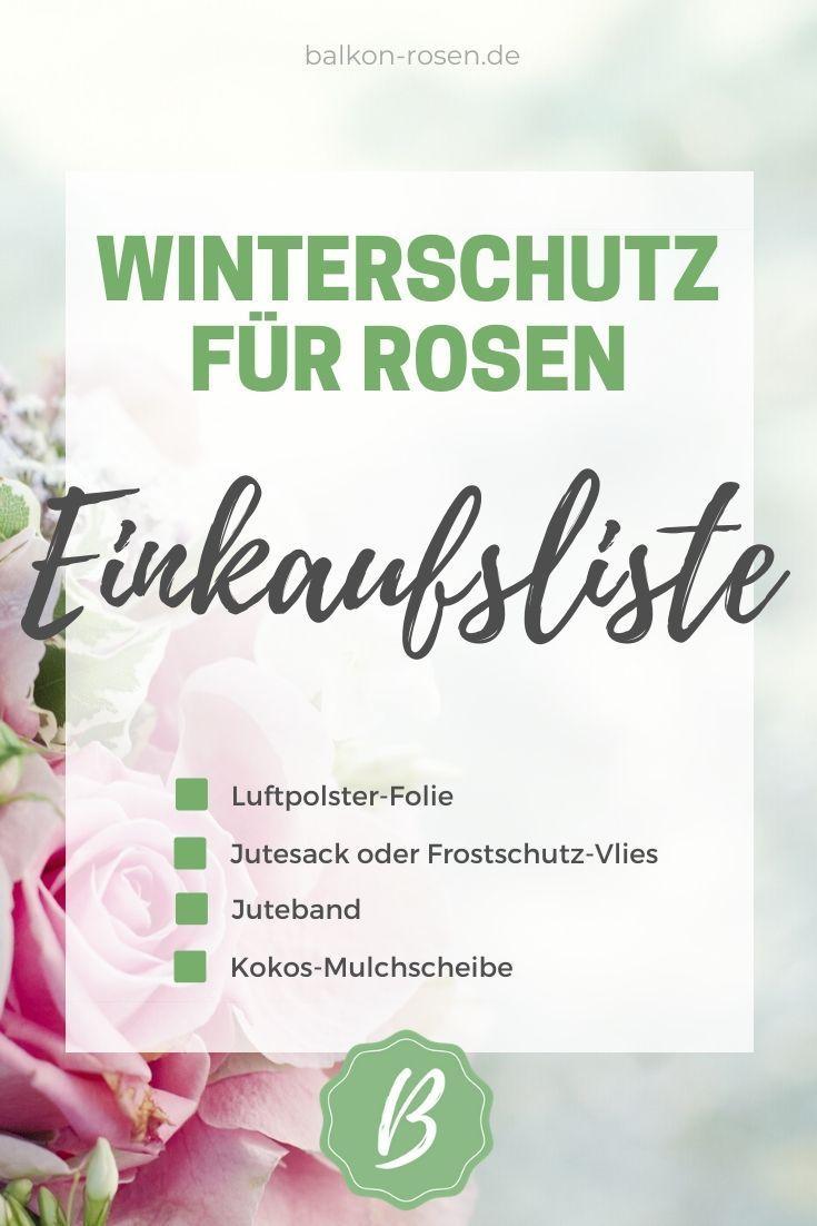 Winterschutz Fur Rosen Das Brauchst Du Frostschutz Rosensorten Sternrusstau