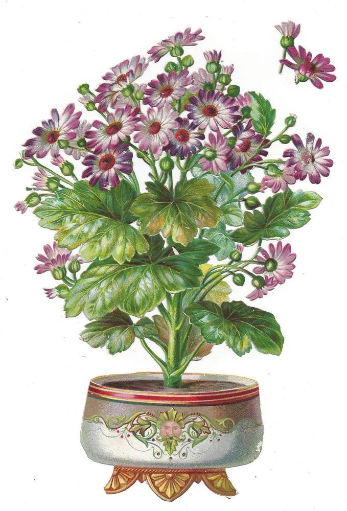 Victorian Die Cut Scrap Vase of Geraniums