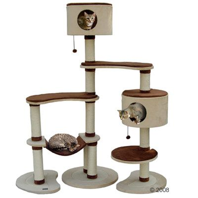Best Cat Tree Plans | Building Cat Tree Furniture: Cat Tree Condo and Scratch Post