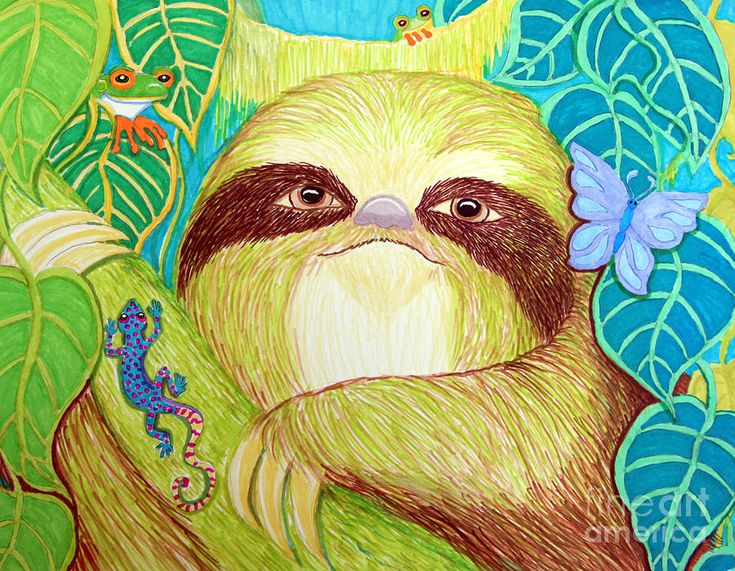 Mossy Sloth Drawing by Nick Gustafson - Mossy Sloth Fine Art Prints and Posters for Sale