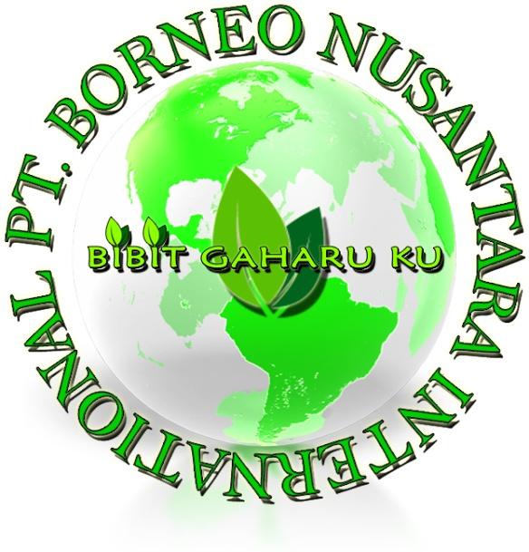 PT. BORNEO NUSANTARA INTERNATIONAL