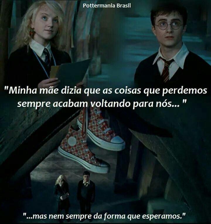 Harry Potter E A Ordem Da Fenix Frase Com Imagens Harry Potter