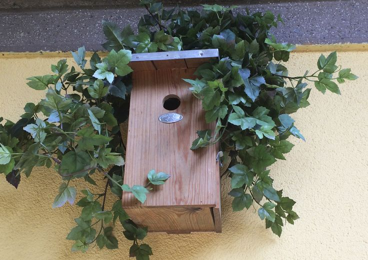 Progetto di STRA-DE  STRATEGIC-DESIGN. Garden Bird Friendly : nido artificiale per cince e cinciarelle.