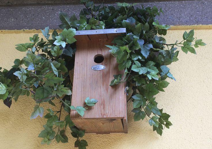 Progetto di STRA-DE  STRATEGIC-DESIGN. Garden Bird Friendly : nido artificiale per cince e cinciarelle.