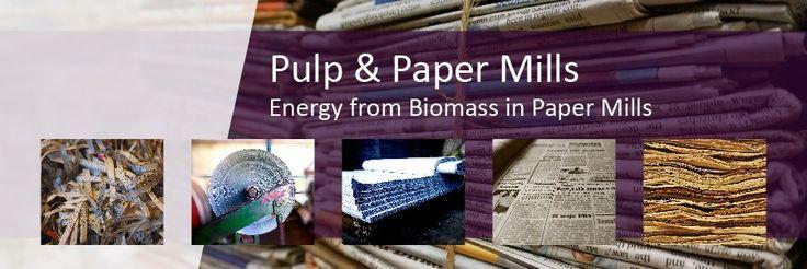 PULP & PAPER MILLS/ENERGY FROM BIOMASS IN PAPER MILLS - DDS CALORIMETERS