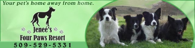 Pet Resort Jenee 39 S Four Paws Resort Walla Walla Washington Pet Resort Pets Pet Home