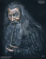 Gandalf The Grey (Hobbit/LOTR) - Sir Ian McKellen by The-Art-of-Ravenwolf