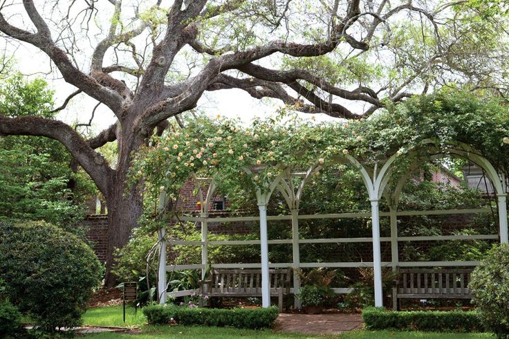 Charleston Gardens Tour - victoriamag.com