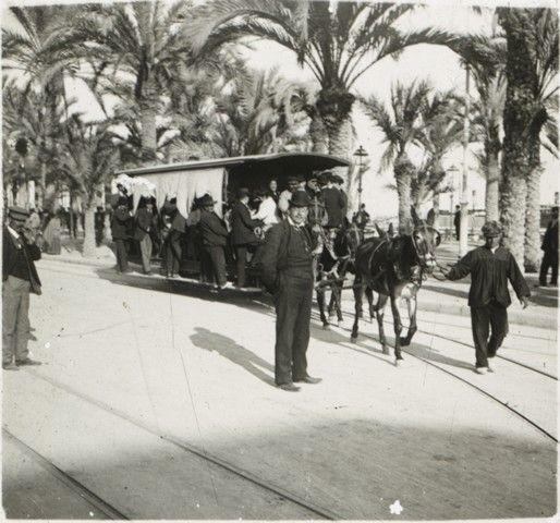 Tranvía urbano de mulas. Itinerario por el Paseo de los Mártires (hoy Explanada) Año: 1900. Archivo Ayuntamiento. Colección: FRANCISCO RAMOS MARTÍN