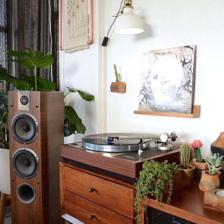 Linn Sondek Lp12 - Record Display - Vinyl - Cactus - Succulents - Stereo - Hifi - Music Spot