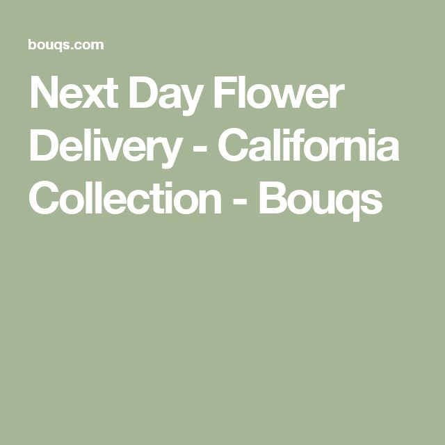 Next Day Flower Delivery - California Collection - Bouqs